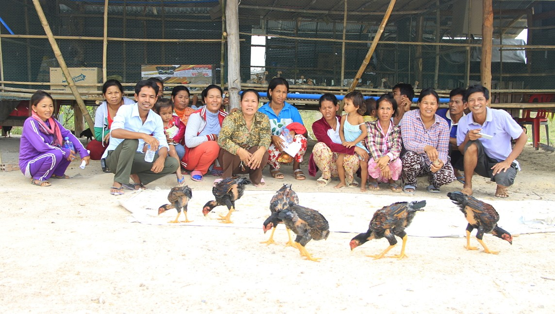 Village Entrepreneurs from Takeo province, Cambodia visit a chicken farm.
